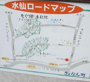水仙ロードマップ