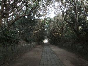 酒列磯前神社参道