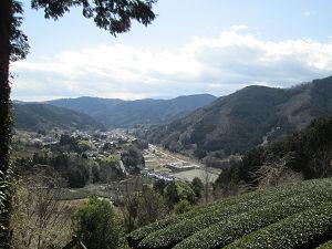 高台から茶畑と集落