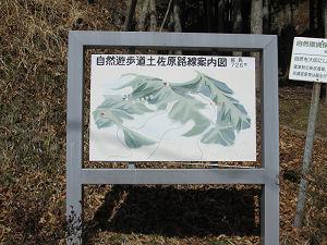 自然遊歩道土佐原線
