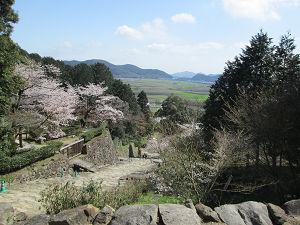 安土城址上からの桜