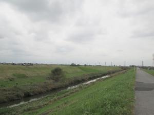 運河沿い遊歩道
