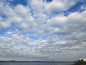 見事な群雲