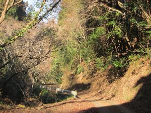 ハイキング向きの山道