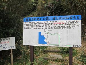 太東漁港の展望ルートは通行止め