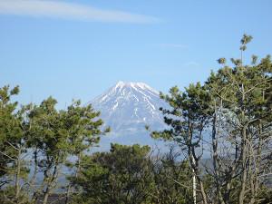東田子の浦からの富士山