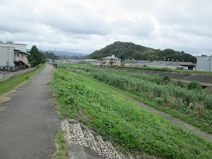 新川沿いの道