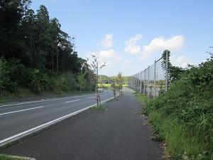印旛沼方面への道