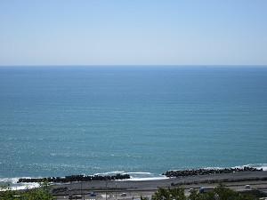 中程から望む太平洋
