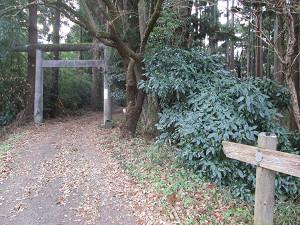 武峯神社の鳥居