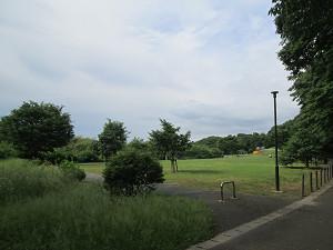 休憩設備のある公園