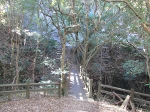 林道への出口