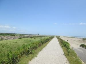 海岸の自転車道らしきもの