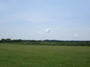 河川敷の草地