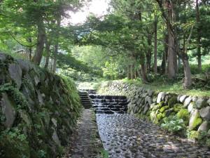 滝沢公園遊歩道