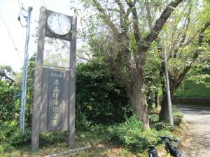 印旛沼公園入口