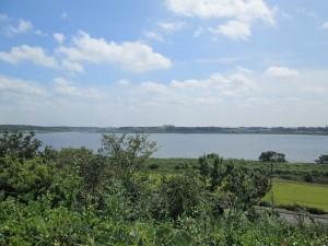 展望台からの印旛沼