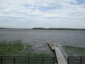 波頭を立てる印旛沼