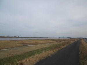 枯れた利根川の堤