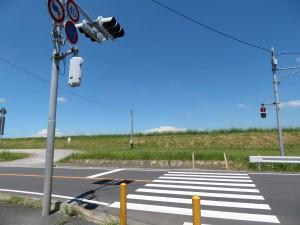 水郷ライン横断歩道