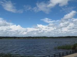 強風の印旛沼