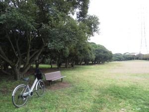 和田山緑地